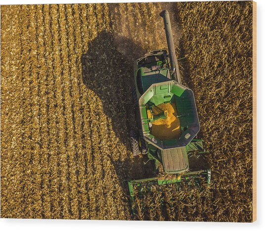Down On The Combine Wood Print