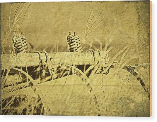 Down On The Farm Wood Print