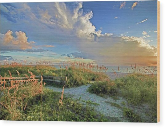 Down To The Beach 2 - Florida Beaches Wood Print