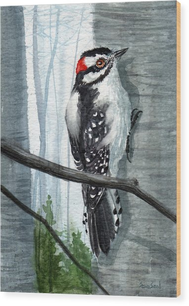 Downey Woodpecker Wood Print