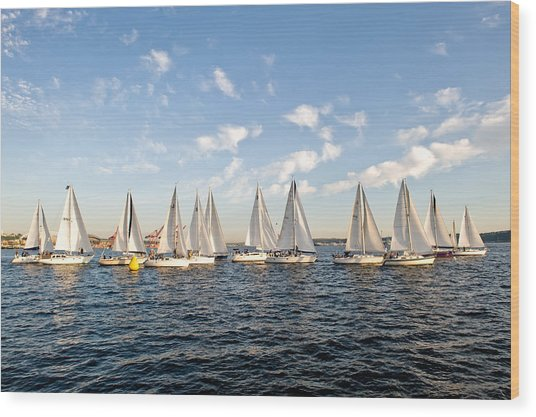 Downtown Sailing Series Wood Print by Tom Dowd