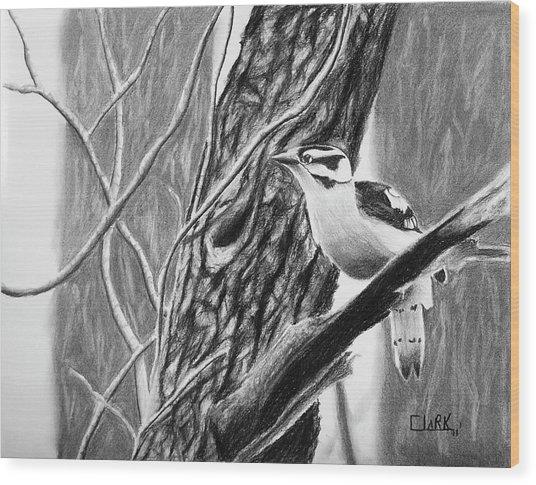 Downy Wood Print
