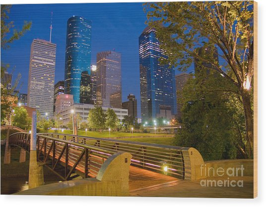 Dowtown Houston By Night Wood Print
