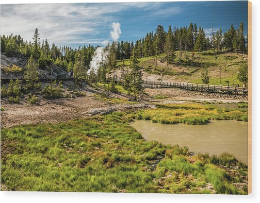 Dragon Geyser At Yellowstone Wood Print