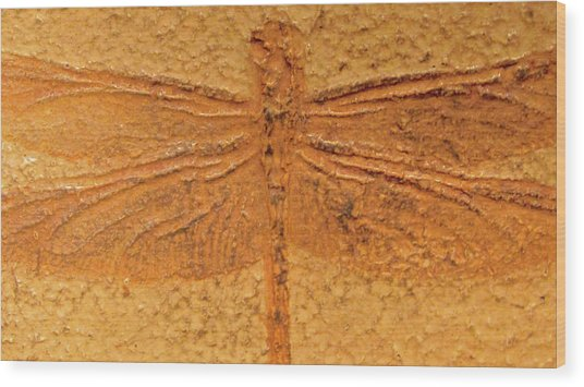 Dragonfly Fossil Wood Print