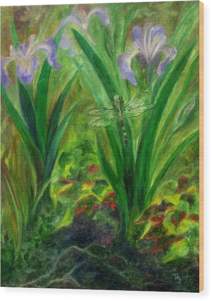 Dragonfly Medicine Wood Print