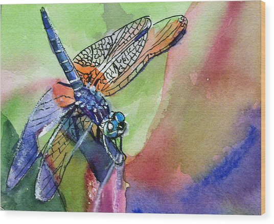 Dragonfly Of Many Colors Wood Print