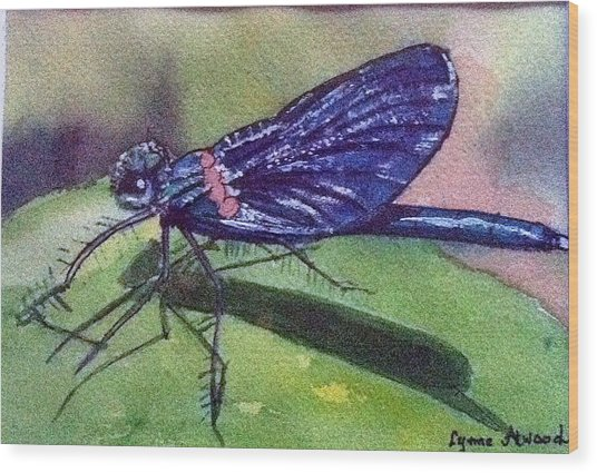 Dragonfly With Shadow Wood Print