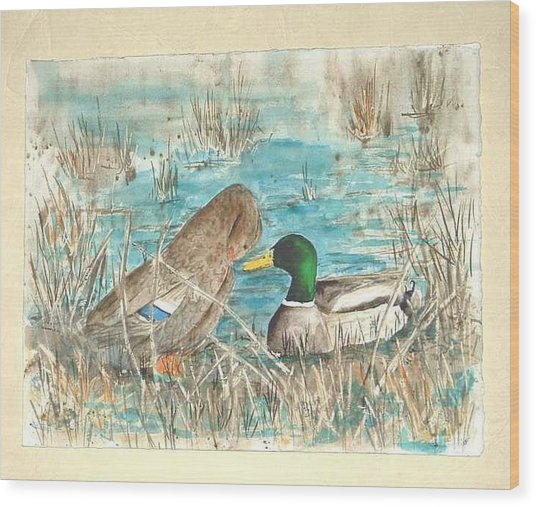 Drake And Hen Wood Print