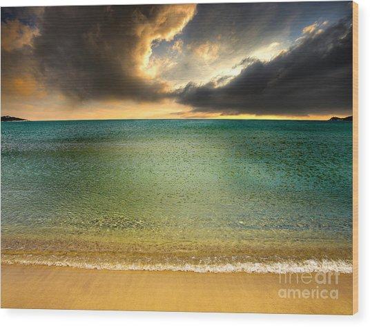 Drama At The Beach Wood Print