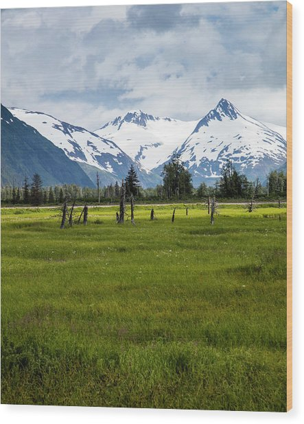 Dramatic Mountains Over A Meadow Wood Print