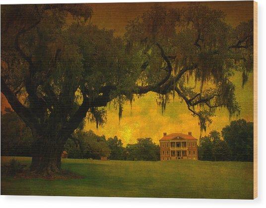 Drayton Hall Plantation In Charleston Wood Print