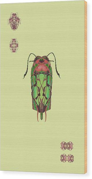 Dread Bug Specimen Wood Print