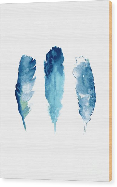 Dream Catcher Feathers Painting Wood Print
