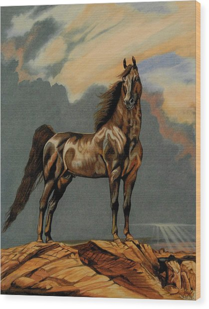 Tango's Daylight - Saddlebred Stallion Wood Print