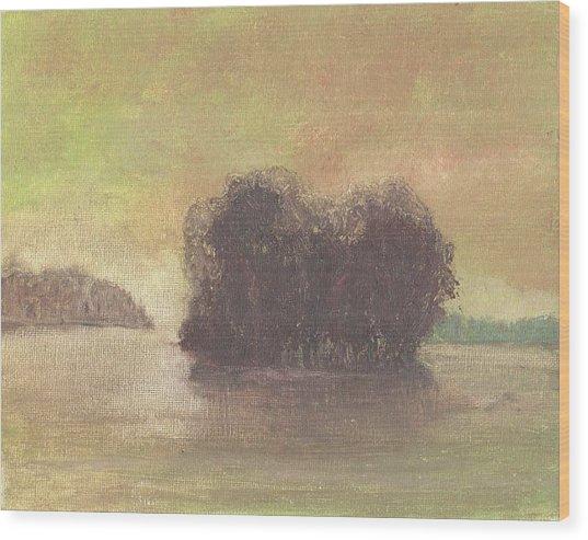 Dream Island Iv Wood Print