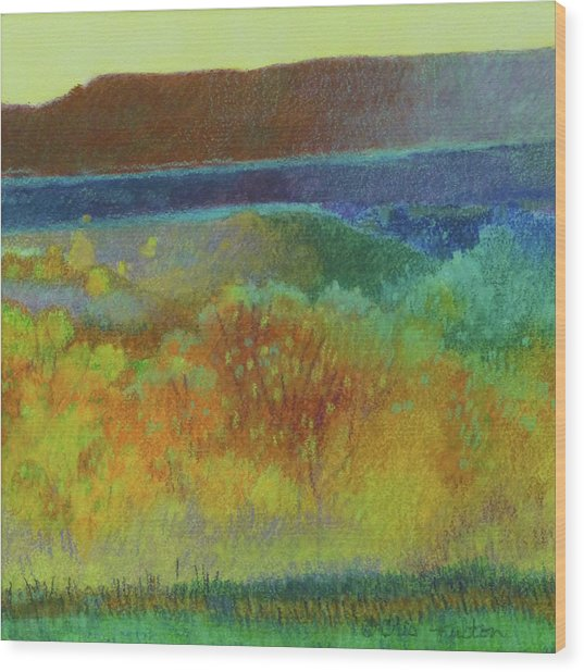 Dream Of Dakota West Wood Print