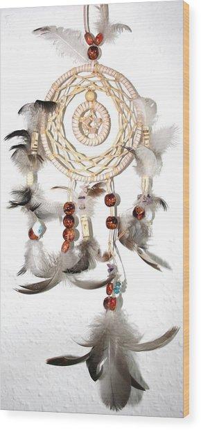 Dreamcatcher Wood Print by Toon De Zwart