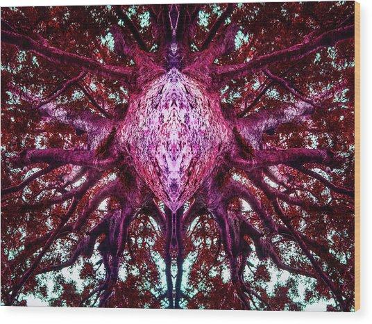 Dreamchaser #1995 Wood Print