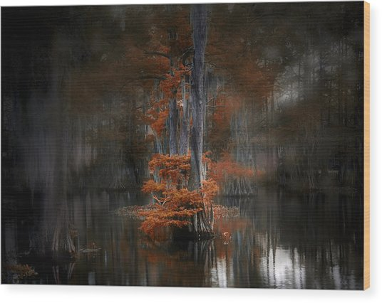Dreamy Autumn Wood Print by Cecil Fuselier
