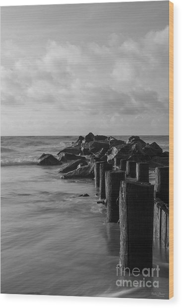 Dreamy Jettie Grayscale Wood Print