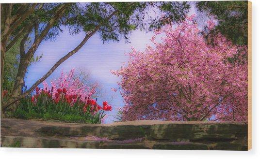 Dreamy Tulip Respite Wood Print