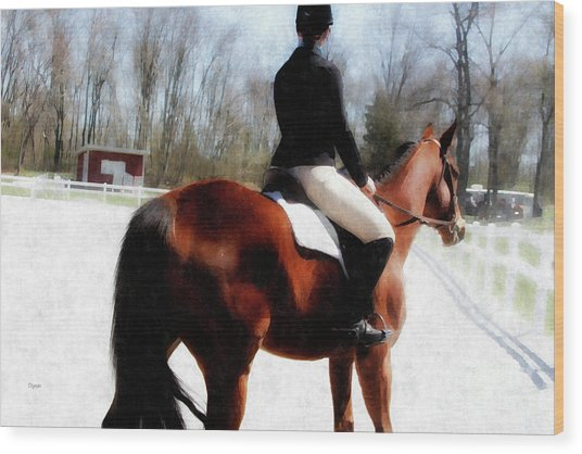 Dressage In Waiting  Wood Print by Steven Digman