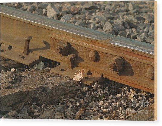 Dried Leaf By Track Wood Print by Steve Augustin