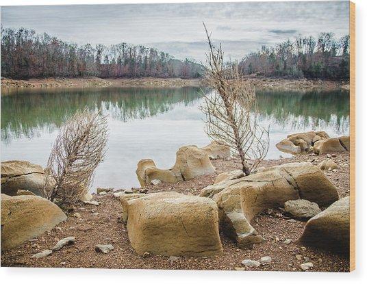 Dried Shrubs At Cherokee Reservoir Wood Print