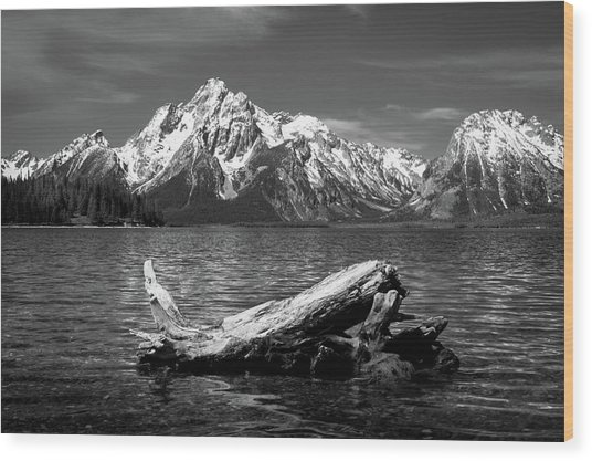 driftwood and Mt. Moran Wood Print