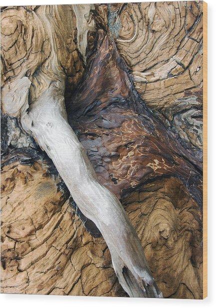 Driftwood Canyon Vi Wood Print by D Kadah Tanaka
