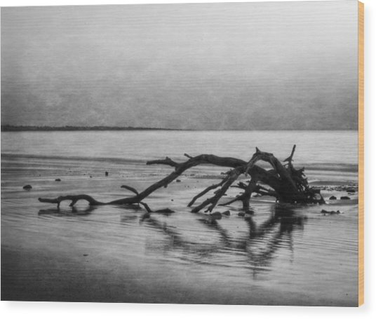 Driftwood Dream In Black And White Wood Print