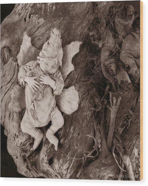 Driftwood Fairy Wood Print