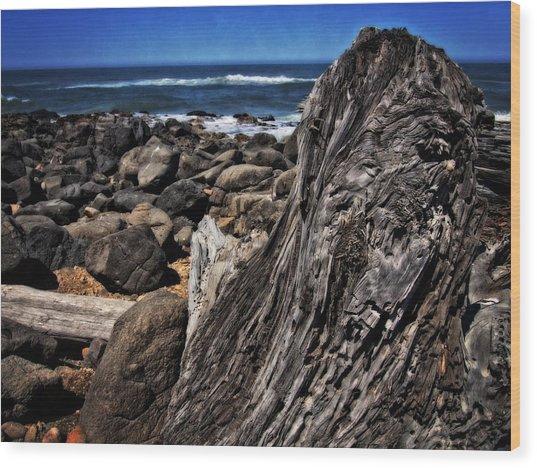 Driftwood Rocks Water Wood Print