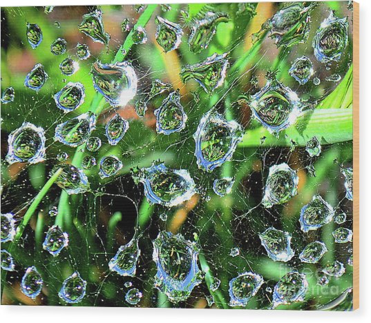 Drops Of Reflection Wood Print