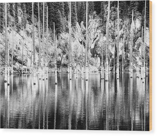 Drowned Wood Print