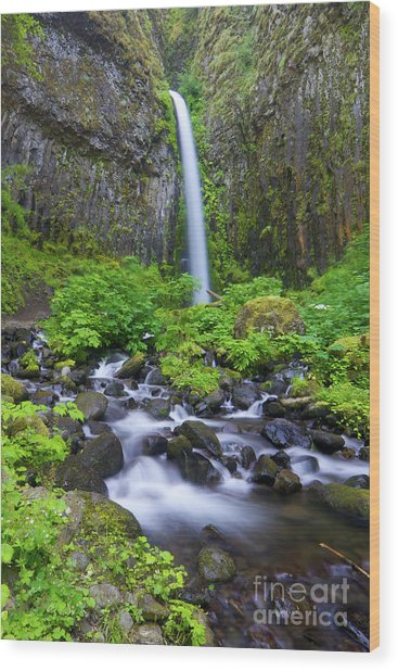 Dry Creek Falls Wood Print