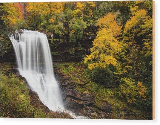 Dry Falls Wood Print by Jim Neal