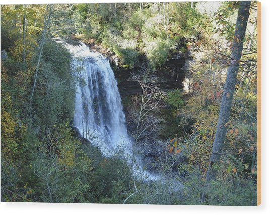 Dry Falls Waterfall North Carolina Wood Print by rd Erickson
