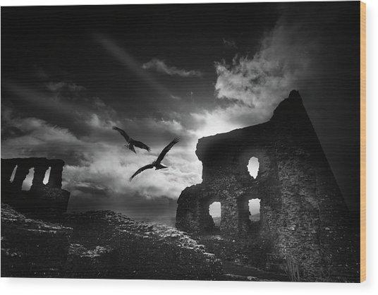 Dryslwyn Castle 3b Wood Print