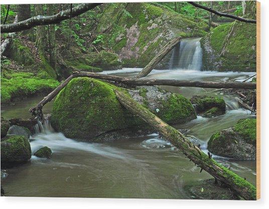 Dual Falls Wood Print