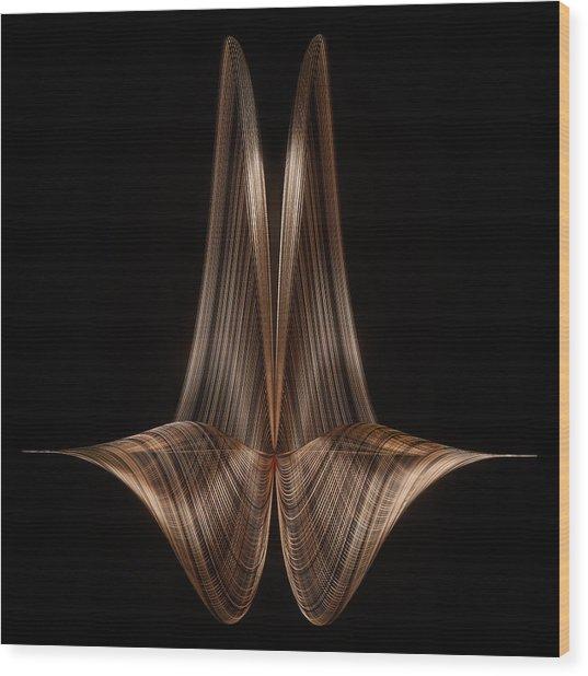 Dual Shell Wood Print by Thomas Helzle