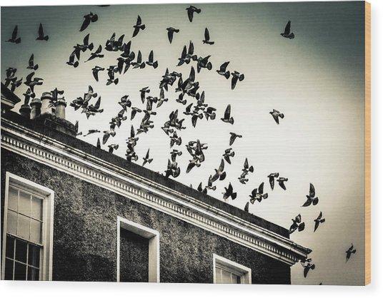 Flight Over Oscar Wilde's Hood, Dublin Wood Print
