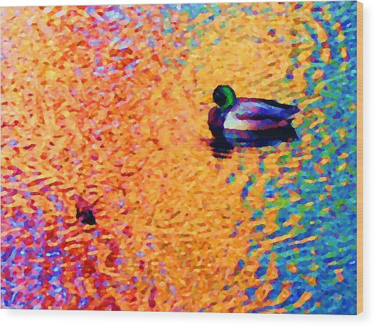 Duck A L'orange Wood Print