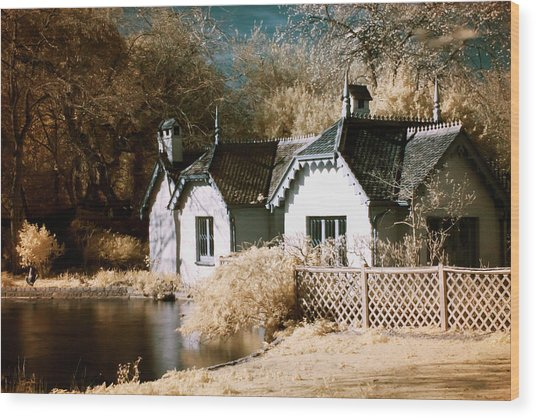 Wood Print featuring the photograph Duck Island Cottage by Helga Novelli