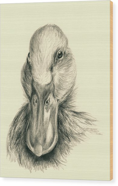 Duck Portrait In Charcoal Wood Print