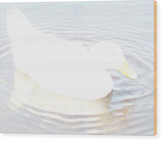 Duck Relaxing Wood Print