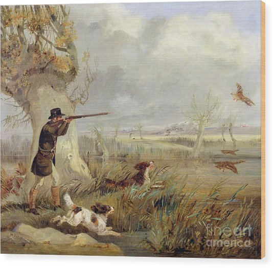Duck Shooting  Wood Print