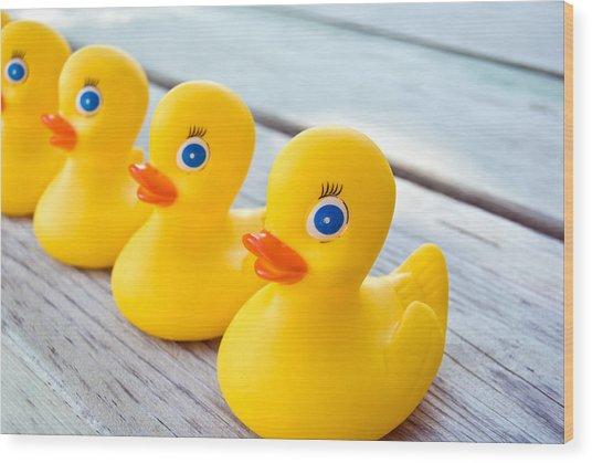 Ducks In A Row Wood Print by Maria Dryfhout