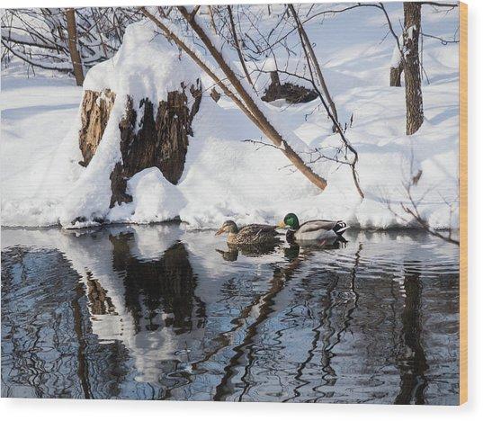Ducks In Snow Wood Print